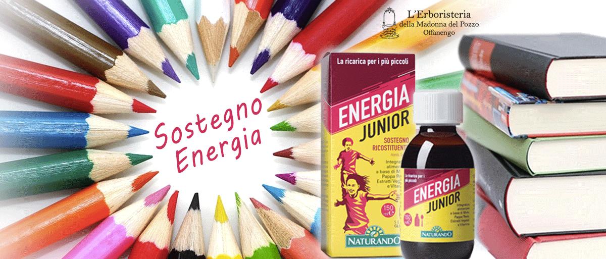 sostegno energia